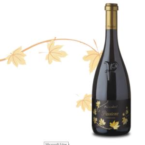 Pilandro: da terreni argillosi e calcarei nasce un vino che si evolve nel tempo